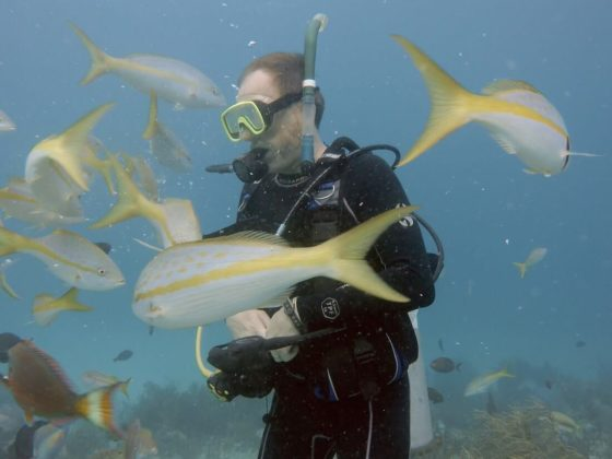 rob carter underwater with fish