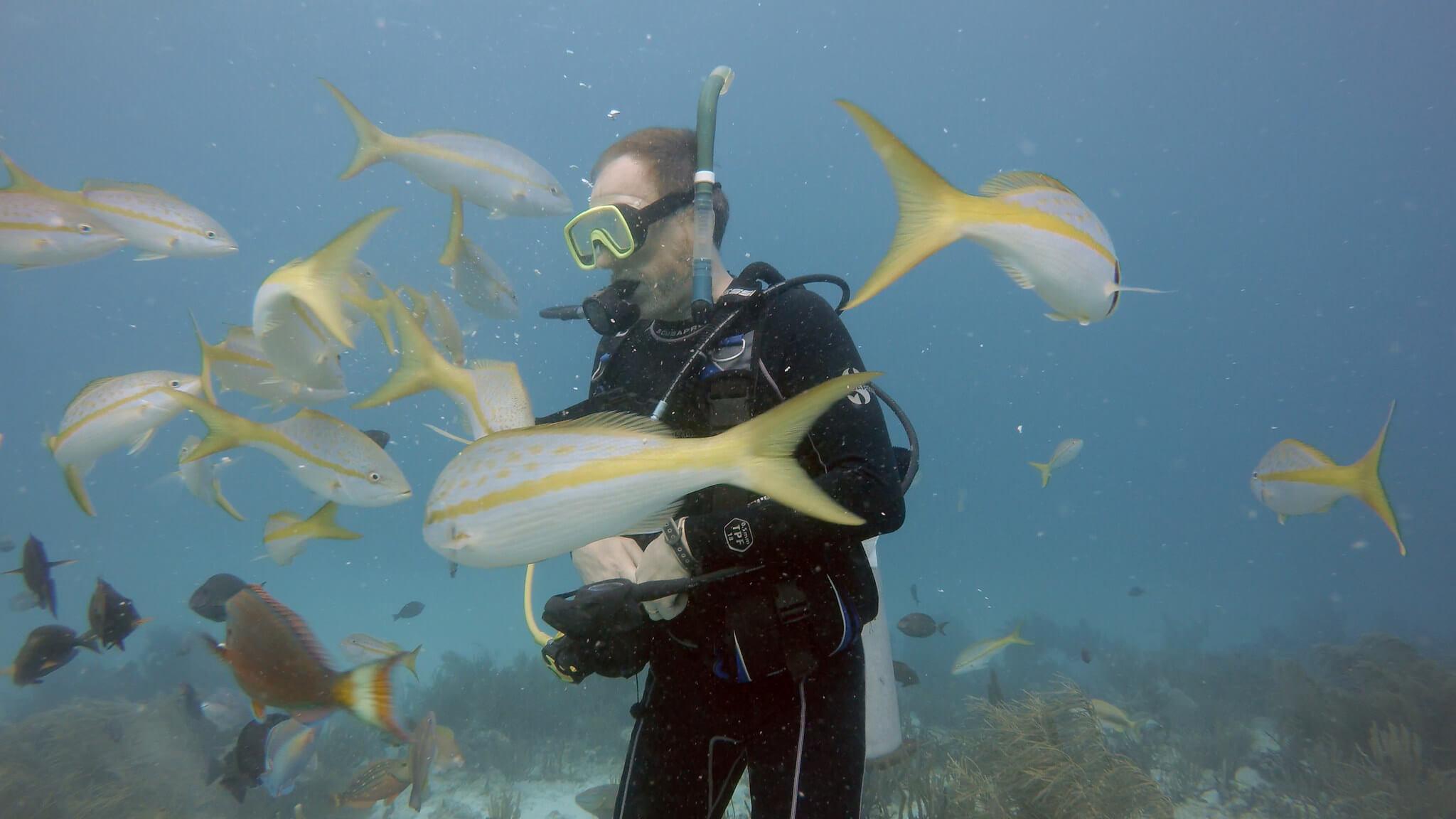 Rob Carter underwater SCUBA diving