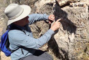 Steve Austin pointing out Nautiloids