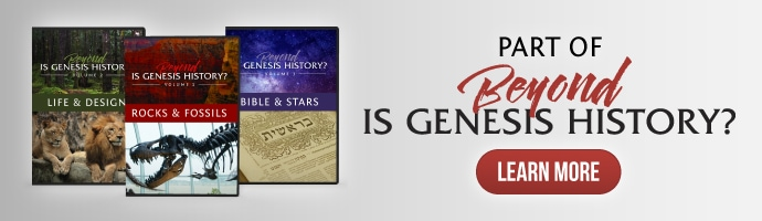 Part of Beyond Is Genesis History Vol. 1 - Rocks & Fossils